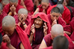 buddshit od nun with others praying Olivier adam